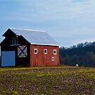 Little Red Barn by Jeanne Sheridan