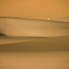 Walking in the Sahara, Morocco by Debbie Pinard