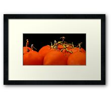 Golfing At The Tomato Beach Classic Framed Print