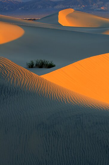 Death Valley Symphony Of Light by Bob Christopher
