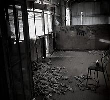 shearing shed  by manda76