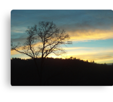 Tree At Sunset Canvas Print