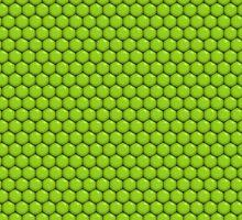 Lizard Skin by dvint1