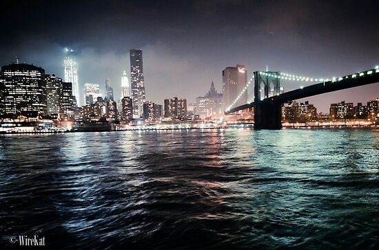 Brooklyn's View by WireKat