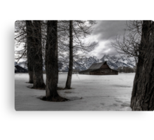 Wintering Wyoming Canvas Print