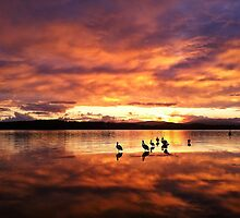 What are we waiting for,,,,,,,, Sunset! by Ian Berry
