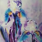 Irises on silk by © Pauline Wherrell