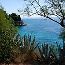 Hvar Beach  by 305movingart