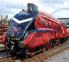 York City FC - Promotion Train 2011-2012 by VauxBubble