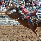 Bareback Rodeo Rider by msqrd2
