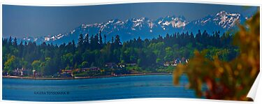 Olympic Mountains (colour img) by Turtle6