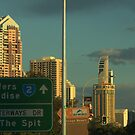 THE SPIT OR THE SPLIT by myraj