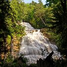 Bridal Falls by Tracy Friesen