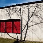Red Window With Tree by Lisa Diamond