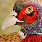 A Pheasant Portrait by Kathie Nichols