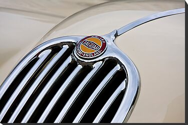 White Jaguar XK 140 by dlhedberg