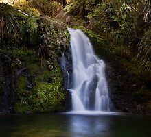Whataroa Falls by Ken Wright