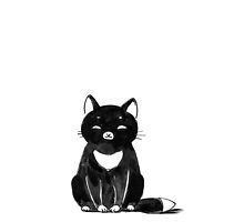 Black cat by freeminds