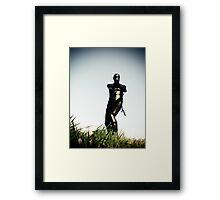 Ray Gun Zentai 2012 Set II Pic 06 Framed Print