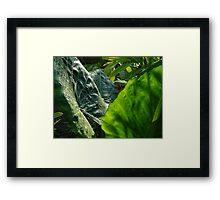 Green Plants - Plantas Verdes Framed Print