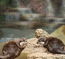 Otters paradise by Lissywitch