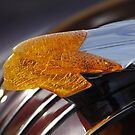 Glowing Indian Hood Ornament - 1954 Pontiac Starchief  by Bill Hurst