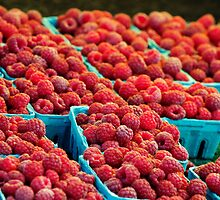 Roseville Farmer's Market II by KentuckyJim