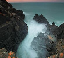the blowhole... by David Murphy