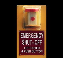 Shiny Candylike Button by Margaret Bryant