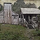 Vintage view of Waldheim Chalet - Cradle Mountain by TonyCrehan
