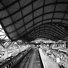 Southern Cross Station Melbourne by robertsscholes