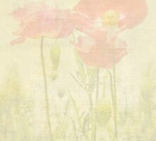 Poppies Monet Style by Catherine Hamilton-Veal  ©