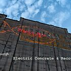 Electric Concrete by Frank Bibbins