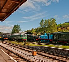 Buckfastleigh Station by David J Knight