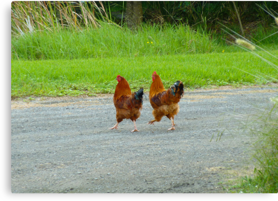 Tell Me Again Why We're Crossing This Road! by Sharon Brown