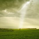 Ray of Light by Nigel Bangert