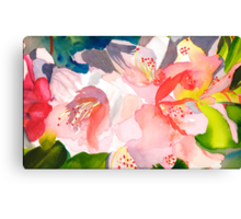 Rhododendron in Peach Canvas Print