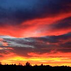 Rainbow Sunset by Emily Barnes