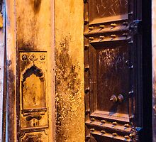 Old Delhi Door by BH Neely
