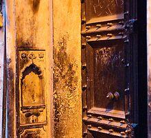 Old Delhi Door by BH Neely