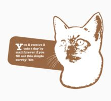 You ll receive 2 cats a day by mail forever if you fill out the simple survey: Yes by Catebooks