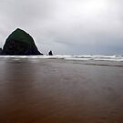 Haystack Rock by Jennifer Hulbert-Hortman