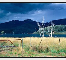Approaching Storm, Lake Buffalo VIC by Chris Munn