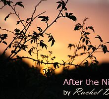 After The Night - book cover by Rachel Dax