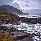 Oregon Coast by Adam Northam