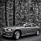 B/W Dodge by Adam Northam