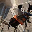 Burro Taxi Santorini Greece by Bob Christopher