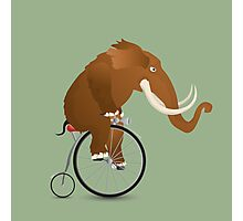 Mammoth on a bicycle Photographic Print