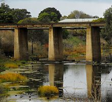 Rail Bridge in Allansford, Victoria by Kayleigh Walmsley
