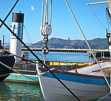 San Francisco old ships by David Denny
